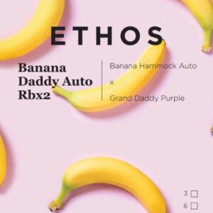 Ethos – Mix n' Match Autoflower Bro Box (10pk)